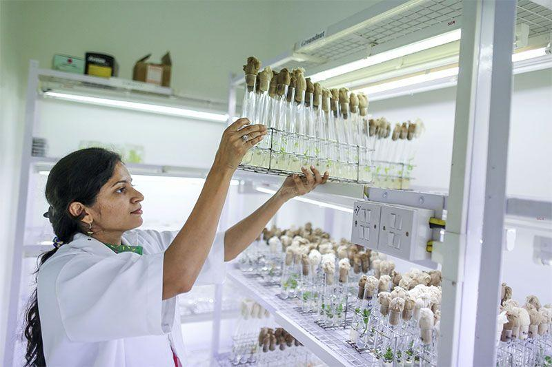 How Indian biotech is driving innovation