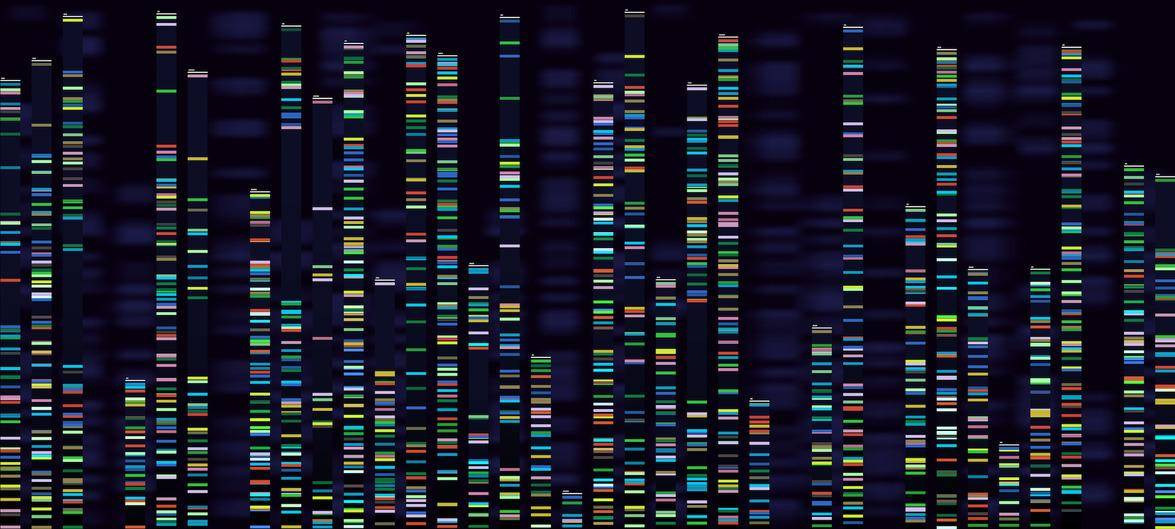 The future of genetic engineering