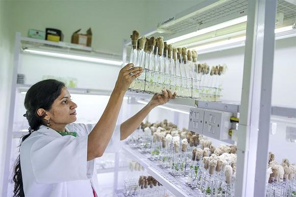 Nature Careers India | Find the best scientific jobs and